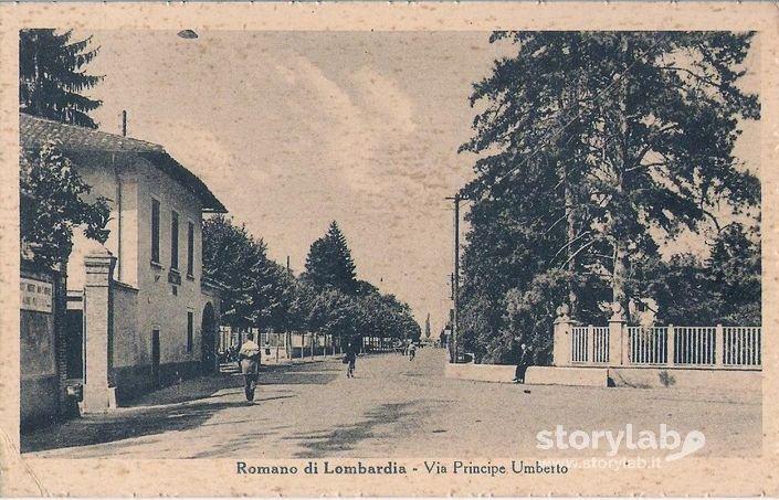 Matrimonio Romano Di Lombardia : Romano di lombardia via principe umberto storylab